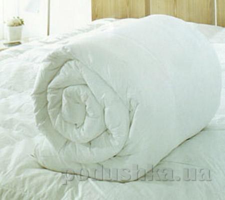 Одеяло антиаллергенное Home line бязь-голд