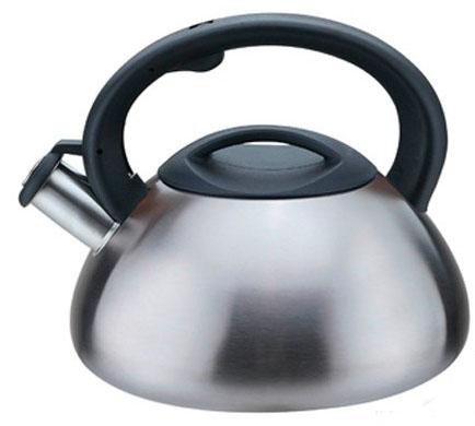 Чайник MAESTRO