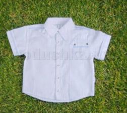 Рубашка для мальчиков Бемби РБ17 сорочечная ткань