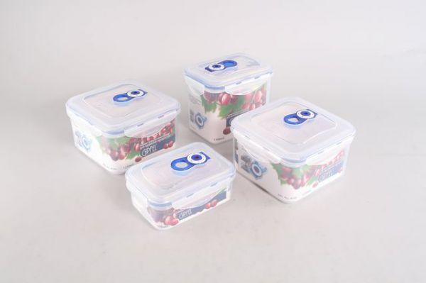 Набор вакуумных контейнеров для хранения продуктов(4шт) 4546