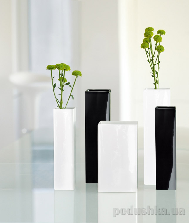 Декоративная ваза Quadro Asa selection black