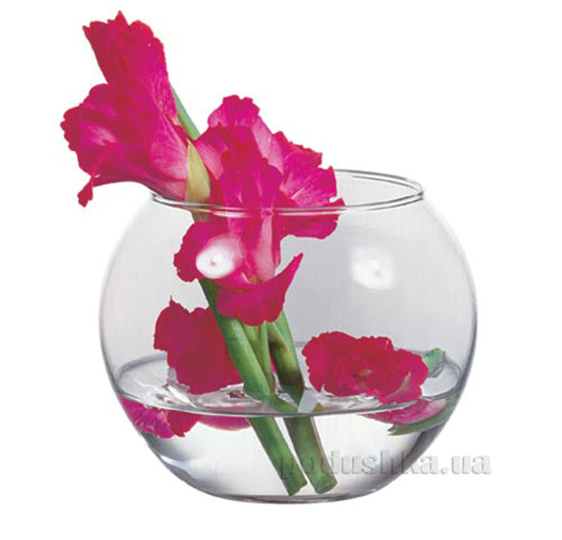 Декоративная ваза-аквариум Flora Pasabahce 43427