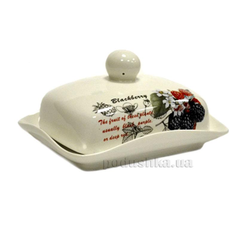 Фарфоровая масленка Ежевика Maestro MR. 10025-45