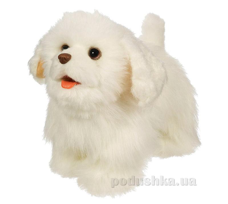 FRF Ходячий щенок в ассортименте 26912 Hasbro