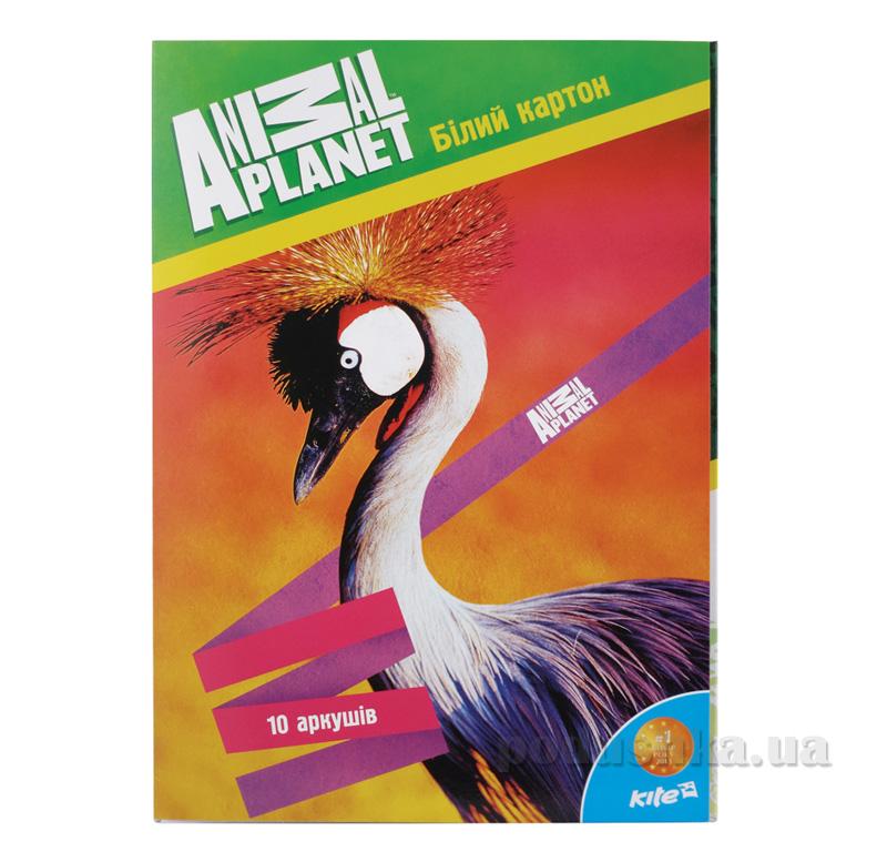 Картон белый двухсторонний Kite Animal Planet AP15-254K