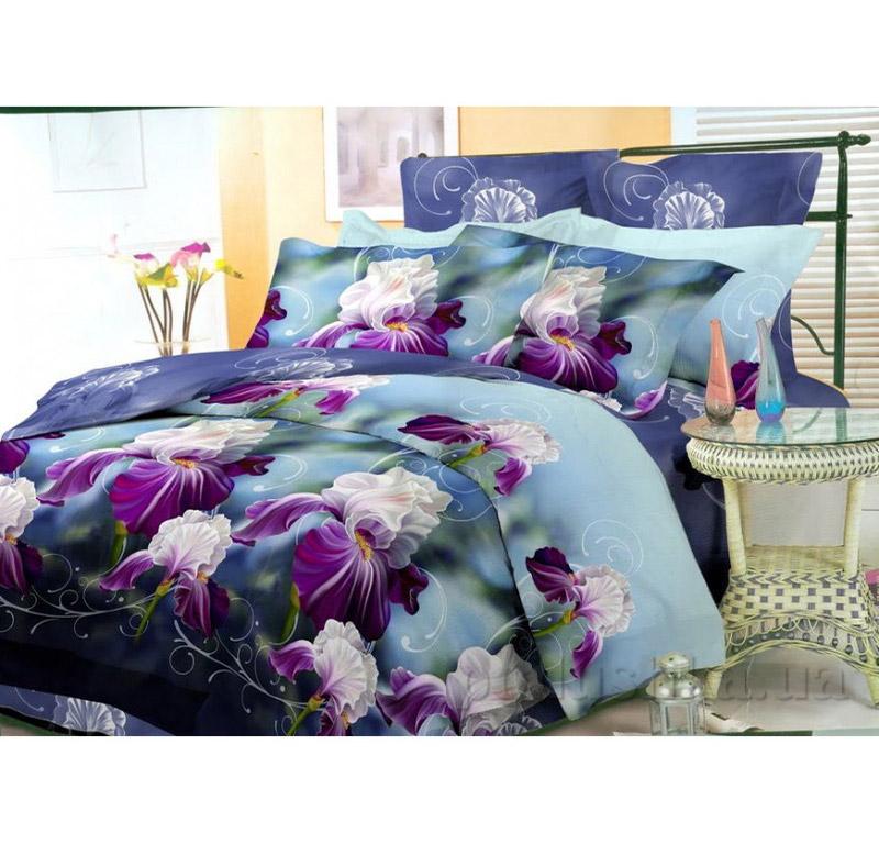 Комплект постельного белья Amore Roosters ранфорс