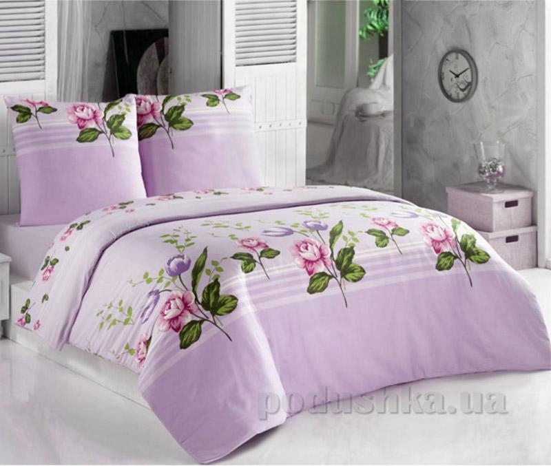 Комплект постельного белья Classi Coleus Arya 1001168