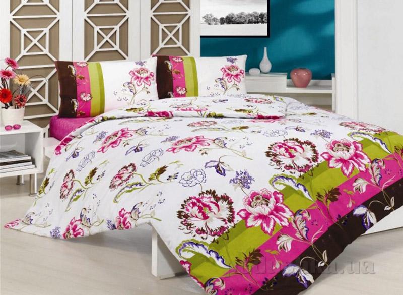 Комплект постельного белья Classi Duardo Arya 1000317