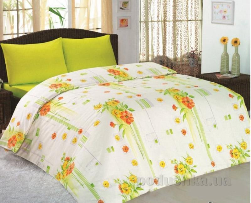 Комплект постельного белья Classi Eva Buket Arya 1000851 зеленый