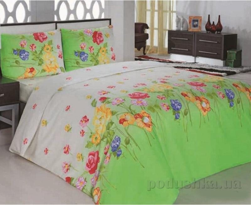 Комплект постельного белья Classi Gardenia Arya 1000855 Зеленый