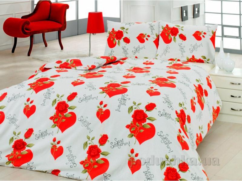 Комплект постельного белья Classi Maurizio Arya 1002146