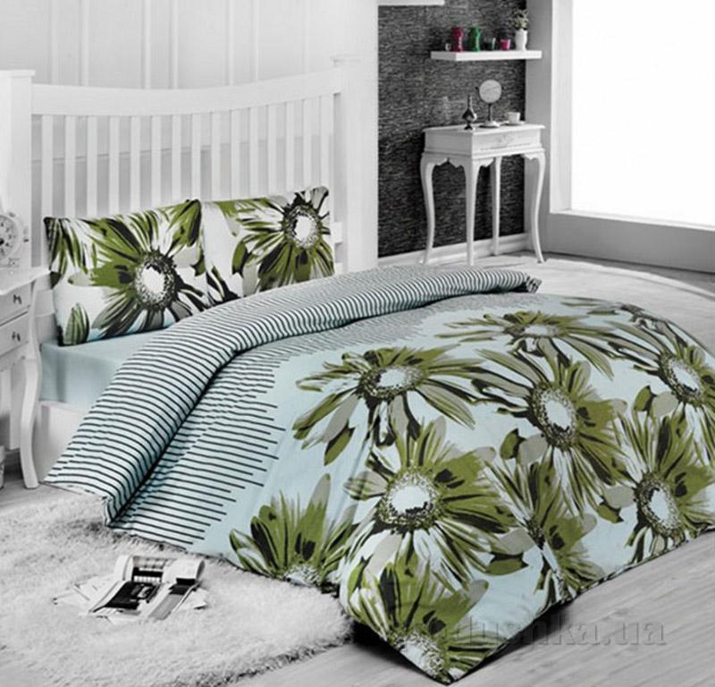 Комплект постельного белья Classi Sena Arya 100167 зеленый