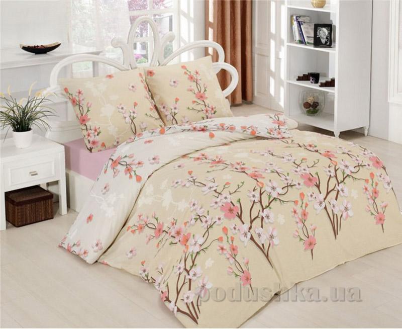 Комплект постельного белья Classi Vinca Arya 1001181