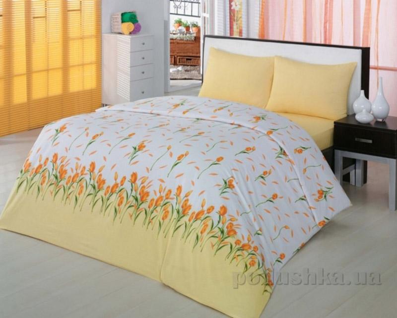 Комплект постельного белья Classi Yasmin Arya желтый