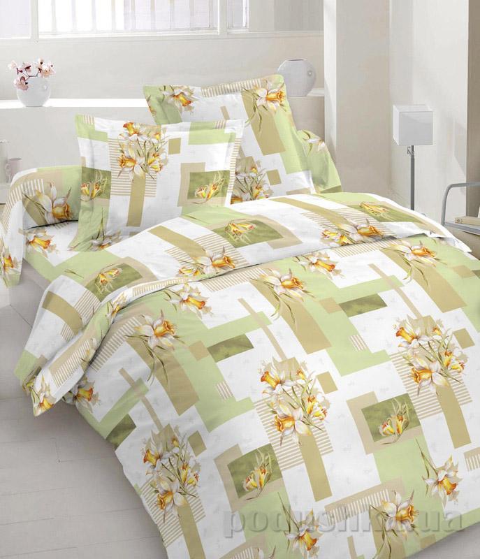 Комплект постельного белья TM Nostra Бязь Люкс бело-оливковый нарциссы