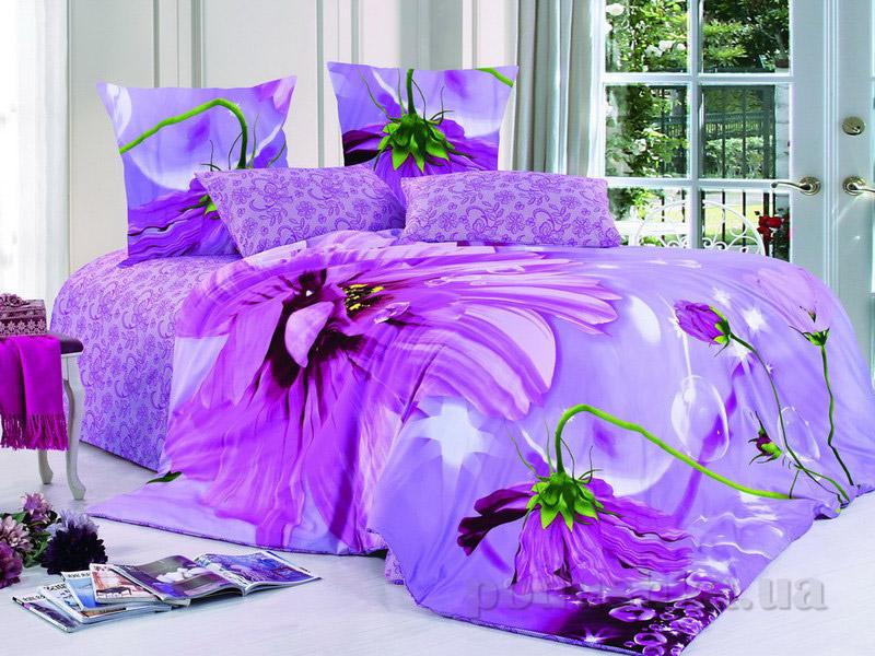 Комплект постельного белья TM Nostra Сатин фиолетово-сиреневые цветы