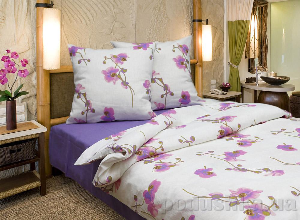 Комплекты постельного белья Орхидеи 13с130-ШР