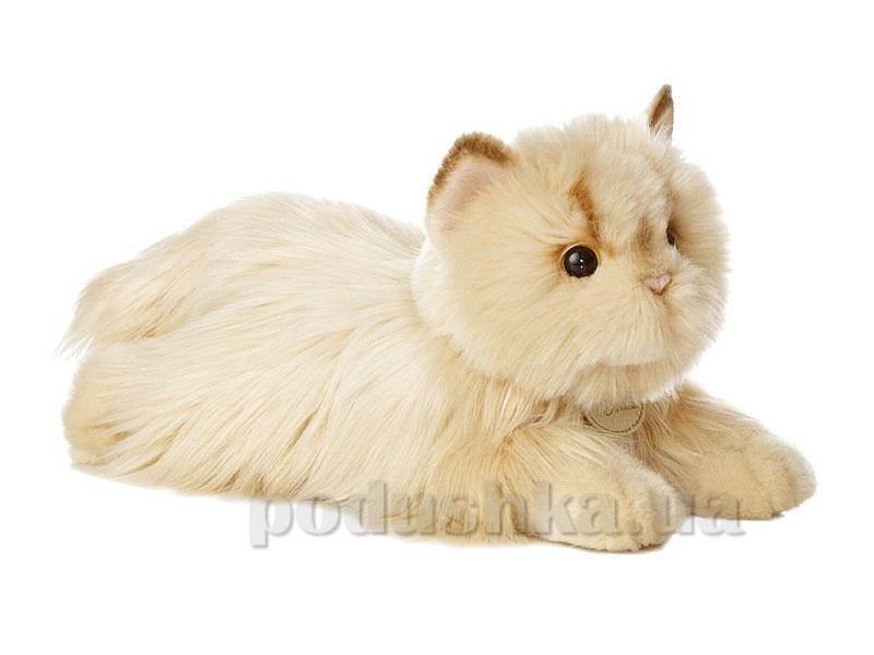 Кошка персидская Aurora