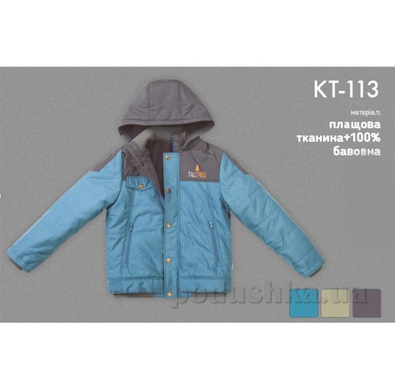 Куртка демисезонная для мальчика Bembi КТ113 плащевка