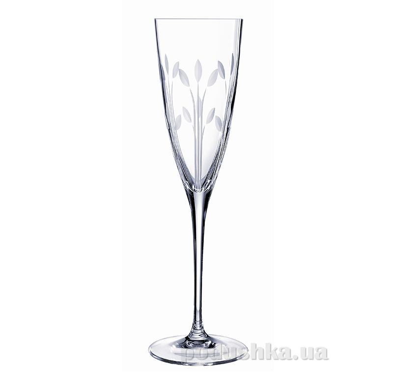 Набор бокалов для шампанского Cristal D Arques Diamax Muse G5646