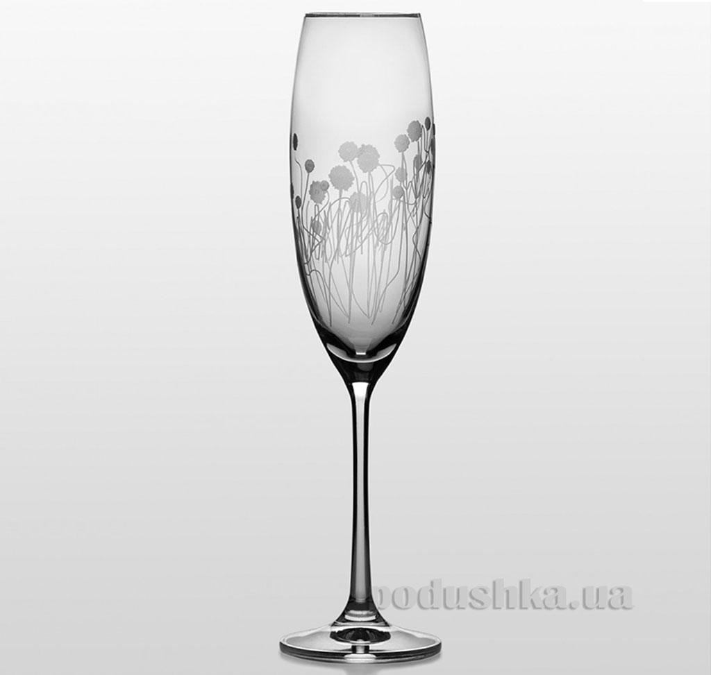 Набор бокалов для шампанского Grandioso Helena Bohemia Sklo платина 31-03-230-2-031