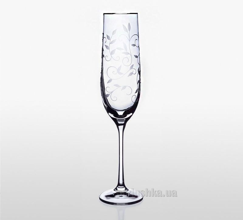 Набор бокалов для шампанского платина Viola Bohemia Sklo 06-03-190-6-020