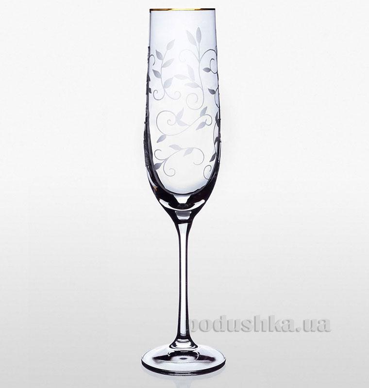 Набор бокалов для шампанского Viola Lido Bohemia Sklo золото 06-03-190-6-019   Bohemia Sklo