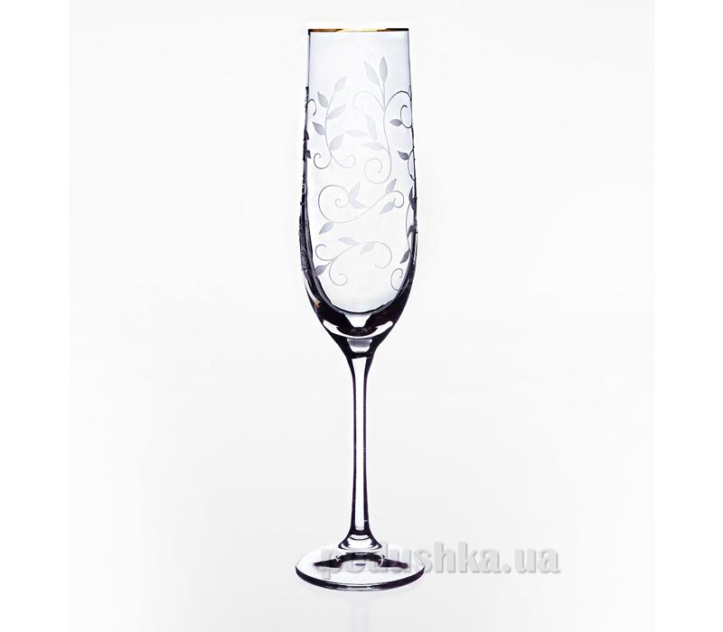 Набор бокалов для шампанского золото Viola Bohemia Sklo 06-03-190-2-019