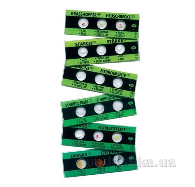 Набор N1 из 6 слайдов для изучения под микроскопом Edu-Toys PE061