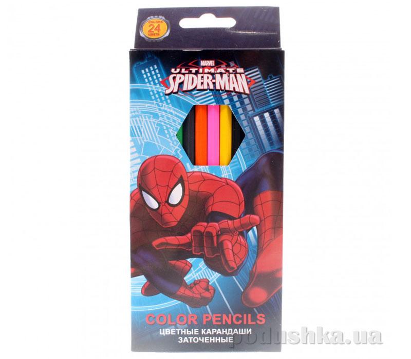 Набор цветных карандашей Spider Man SMAB-US1-1P-24