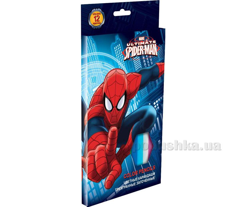 Набор цветных карандашей (треугольные, толстые) Spider Man