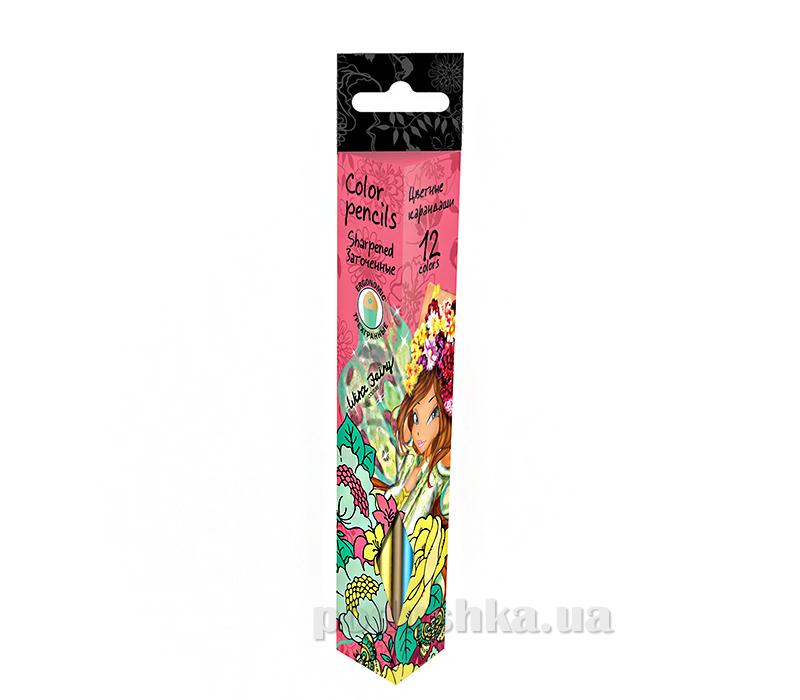 Набор цветных карандашей треугольные Winx WXBB-US1-3P-12