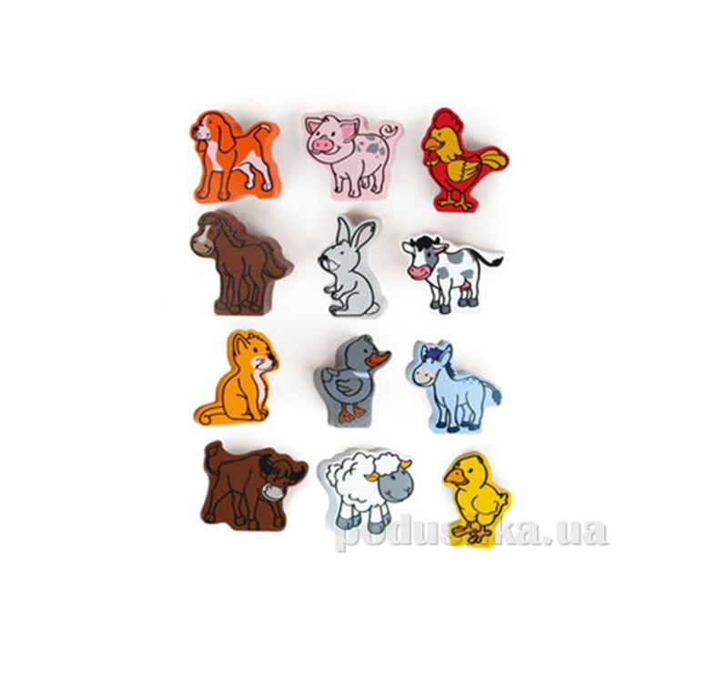 Набор животных Hape AKT-E0901