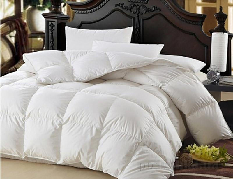 Одеяло пуховое кассетное Зима плюс MirSon Raffaello белый пух 100 % Премиум 053