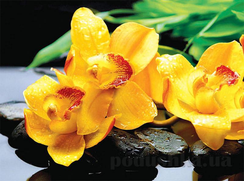 Пакет Большой горизонтальный 612 Цветок