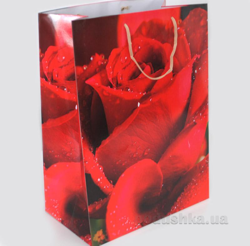 Пакет подарочный большой Розы