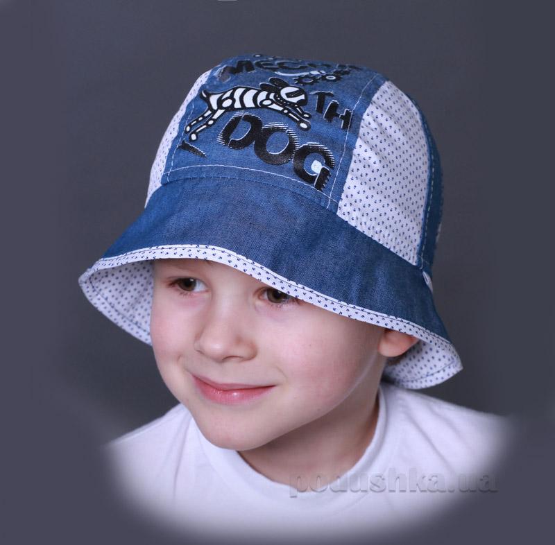Панамка для мальчика Бабасик Сеня