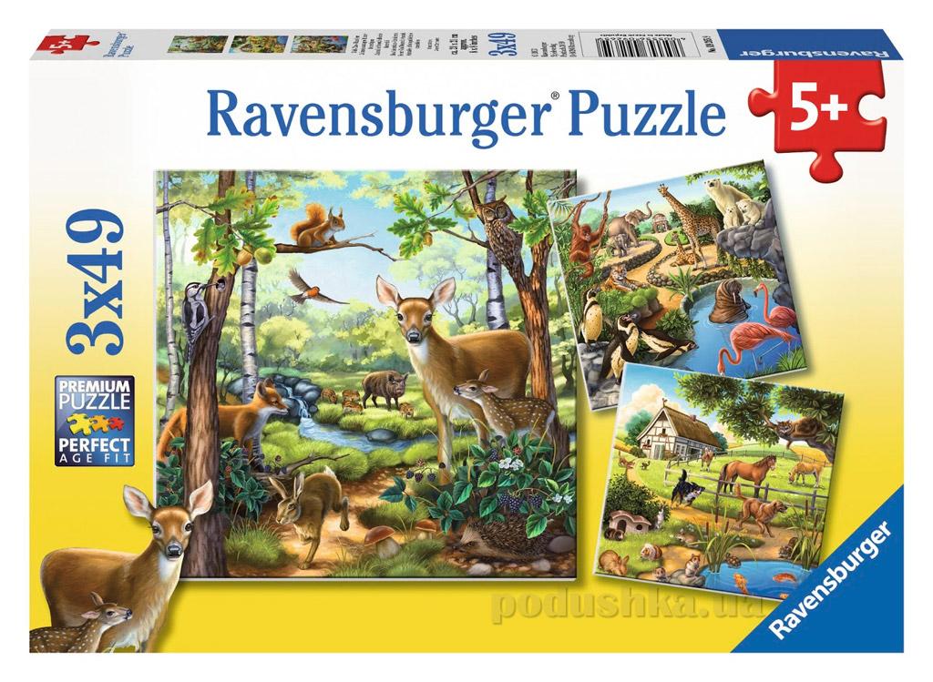 Пазл Ravensburger Животный мир 3х49
