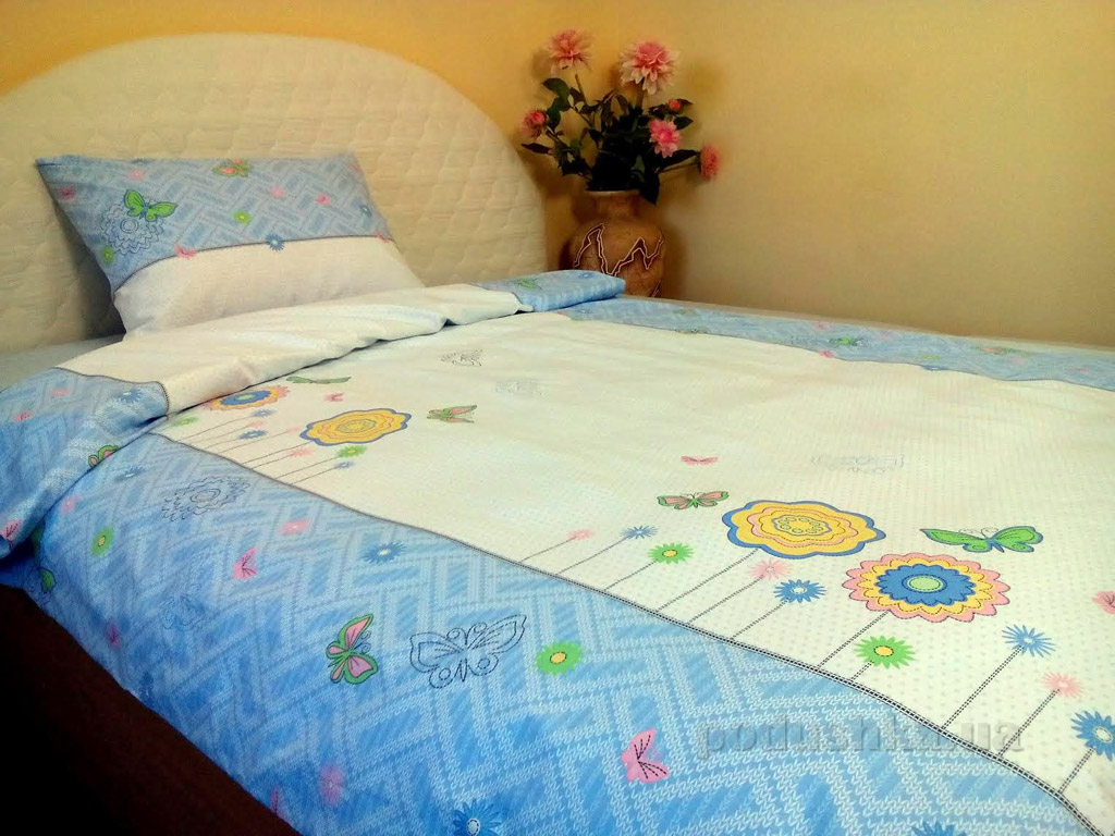 Подростковое постельное белье Билана Цветы на голубом