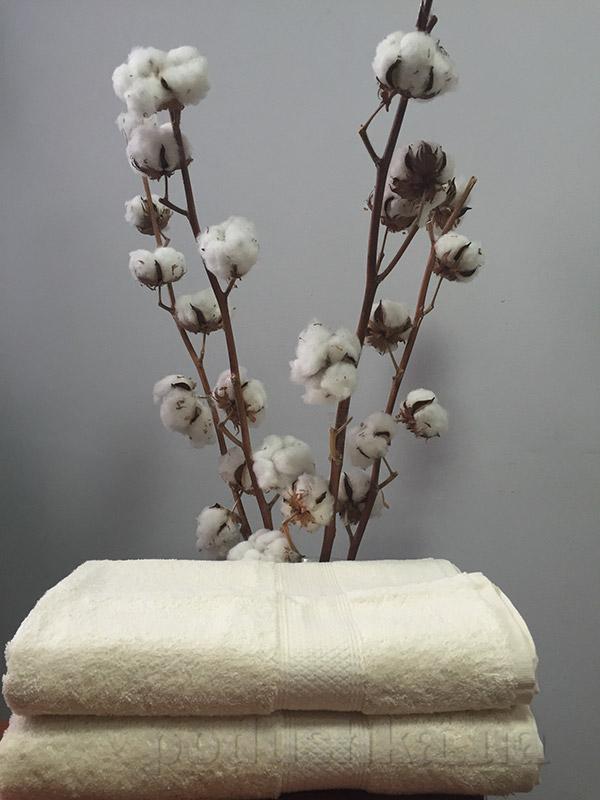 Полотенце махровое Nostra 550 Vanilla ванильное