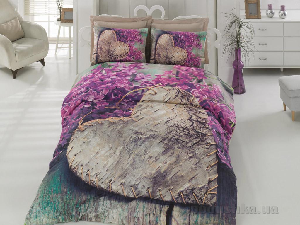 Постельное белье Cotton Box Felicita murdum