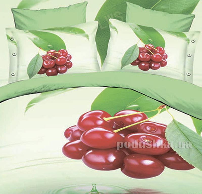 Постельное белье микрофибра Bella Donna Вишневый этюд 0021