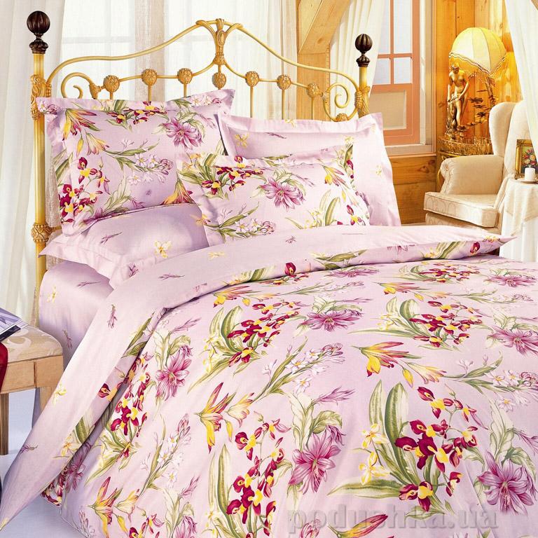 Постельное белье ТЕП Standart collection Ириски розовые К16