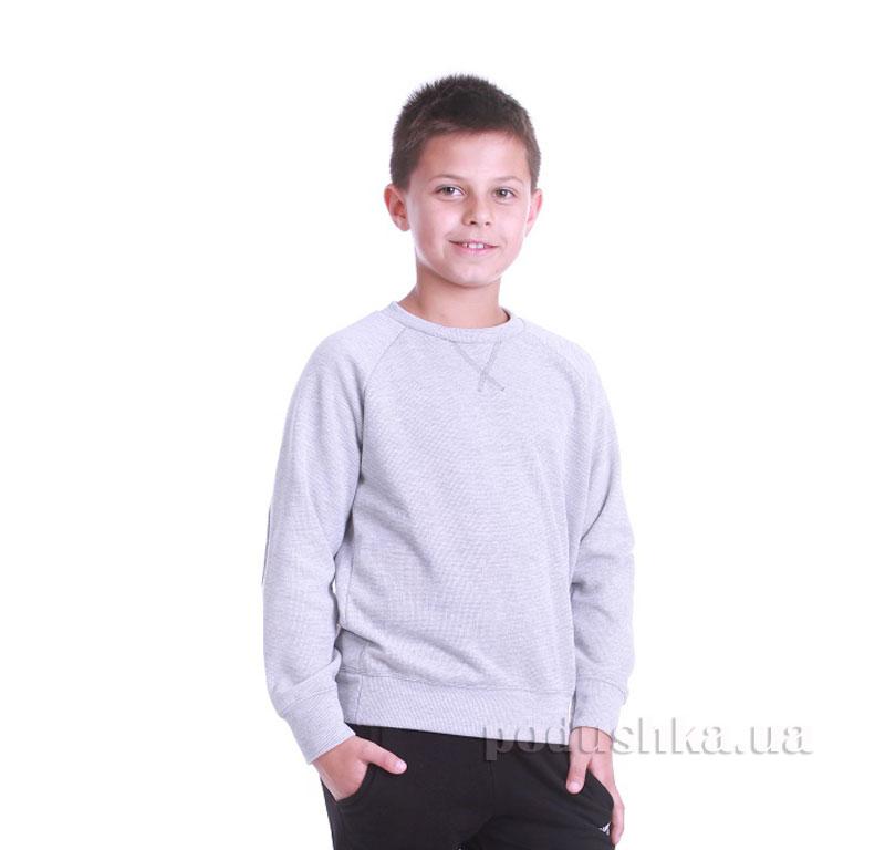 Реглан для мальчика Димакс Р 711 светло-серый