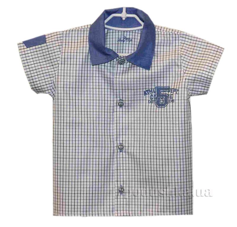 Рубашка для мальчика Baby Life 17.-08 поплин