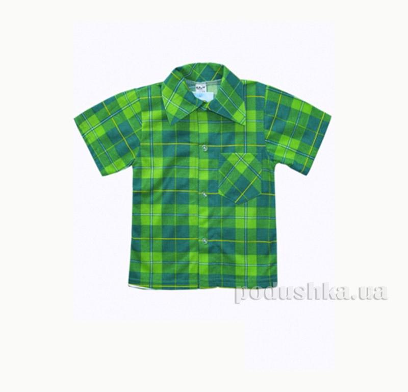 Рубашка для мальчика Клим СК-2(1)