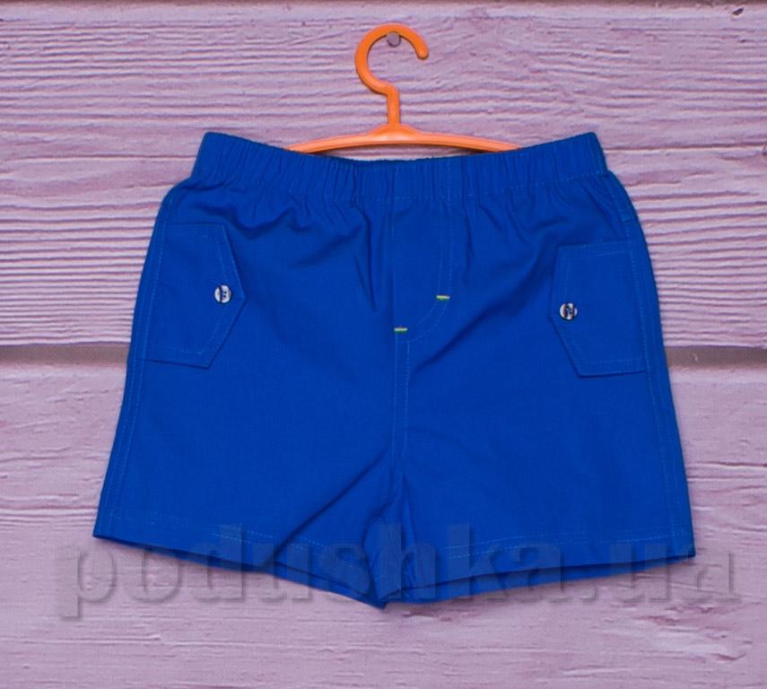 Шорты для мальчика Gloria Jeans 66585 голубые