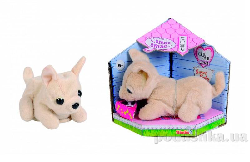 Собачка Чихуахуа Игривый щенок Chi Chi Love 5897616