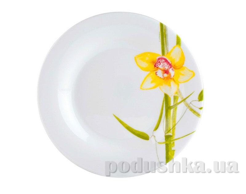 Тарелка для десерта Luminarc Bamboo Tree J0276