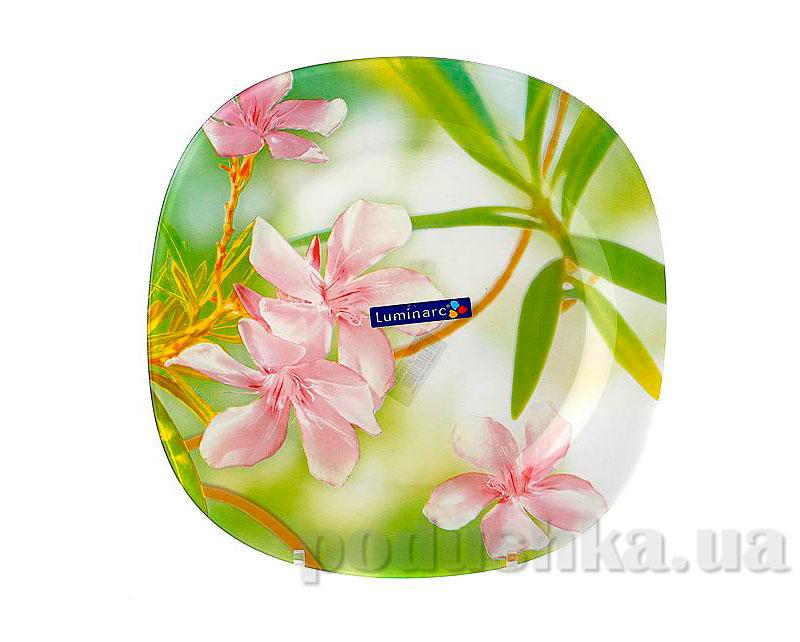 Тарелка обеденная Luminarc Aime Carina Freesia G7805